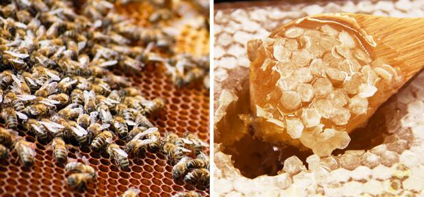 can i use honey for diabetics