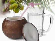 Is Coconut Good for Diabetes
